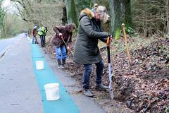 Auf einer Länge von 600 m wird ein grüner Krötenzaun entlang der viel befahrenen Straße am Tangstedter  Forst errichtet.