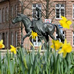 Die Stadt Ludwigslust liegt im Landkreis Ludwigslust-Parchim in Mecklenburg-Vorpommern. Blühende Osterglocken / Narzissen am Alexandrinenplatz - Reiterstandbild der Alexandrine, Prinzessin von Preußen.