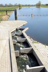 Fischtreppe am Wehr des Gnevsdorfer Vorfluters an der Elbe - der Gnevsdorfer Vorfluter ist ein etwa 11 km langer Kanal zwischen der Havel und der Elbe.