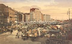 Historische Bilder vom Messberg in der Hamburger Altstadt, Innenstadt. Pferdewagen stehen mit Gemüsekörben hoch beladen auf dem Marktgelände vom Messberg. Die Pferde stehen in der Deichsel und fressen ihr Futter aus der Krippe.