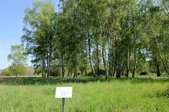 Gelände / Mahnmal vom Aussenlager Neustadt-Glewe des Frauen KZ-Ravensbrück.