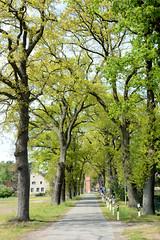 Bilder von Fresenbrügge, Ortsteil von Grabow - Landkreis Luwigslust-Parchim.
