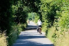 Fotos aus dem Hamburger Stadtteil Altengamme, Vierlande - Bezirk Hamburg Bergedorf. Strecke der Hamburger Marschenbahn, Kleinbahn in den Vier- und Marschlanden, eingestellt ca. 1952 - jetzt asphaltierter Radweg.