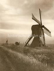 Historische Ansicht von Wasserhebemühlen in Hamburg Ochsenwerder - die Mühlen werden zur Entwässerung des Geländes genutzt.