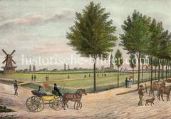 Historische Ansicht vom Heiligengeistfeld - im Hintergrund die Kirchtürme von Hamburg. Eine Kutsche fährt auf der Fahrbahn, auf der ein Kuhhirte mit Hund eine Herde Kühe treibt.
