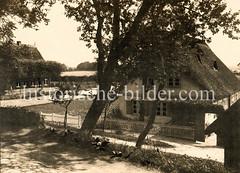 Alte Fotografie von reetgedeckten Bauernhäusern im Hamburger Stadtteil Moorfleet.