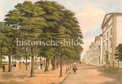 Die Palmaille ist eine alte Straße in Altona; sie wurde 1638 angelegt. Dort wurde das dem Croquet verwandte italienische Ballspiel Palla a maglio (französisch Pallmail, niederländisch Palmalie oder Palmaille, englisch Pall Mall) gespielt.