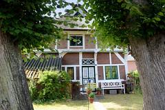 Neuengamme  ist ein Hamburger Stadtteil im Elbmarsch-Gebiet der Vierlande im Bezirk Bergedorf. Historische Architektur in der Straße Achter de Wisch; Wohnhaus mit Reet gedeckt, errichtet 1440 - Linden an der Straße.