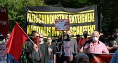 TierschützerInnen demonstrieren am 29.08.20 in Kellinghusen gegen die Fleischindustrie.