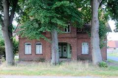 Fotos aus dem Hamburger Stadtteil Reitbrook, Bezirk Bergedorf. Leerstehendes Wohnhaus hinter hohen Linden, die Windschutz bieten.