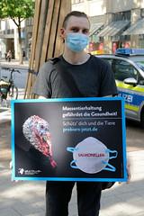 Demonstration auf der Mönckebergstraße in Hamburg - Albert Schweitzer Stiftung  gegen Massentierhaltung - probiers-jetzt.