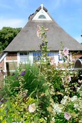 Neuengamme  ist ein Hamburger Stadtteil im Elbmarsch-Gebiet der Vierlande im Bezirk Bergedorf. Reetgedecktes Fachwerkhaus mit blühenden Blumen im Vorgarten.