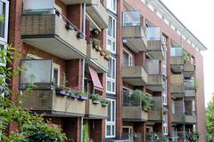Fotos aus dem Hamburger Stadtteil Neustadt, Bezirk Hamburg Mitte. Siedlungsbau in der Böhmkenstraße, Architektur der 1960er Jahre; Balkons mit gelbem Klinker verkleidet - Architekt Hermann Schöne. Die Wohngebäude der Nachkriegszeit stehen unter Denkm