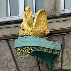Historische Architektur in der Hamburger Innenstadt, Stadtteil Neustadt. Skulptur Goldener Schwan des denkmalgeschützten Gebäudes der Schwan Apotheke in der Hamburger Dammtorstraße. Das Gebäude wurde von 1911 bis 1912 nach Plänen der Architekten Jaco
