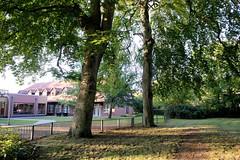 Grünanlage an der Kanalstraße, geplante Erweiterung der Schule An der Bleiche in Ludwigslust.