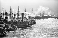 Schlepper auf der Elbe / Hamburg St. Pauli, 1955.