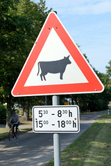 Alt Damerow   ist ein Ortsteil der Gemeinde Domsühl im Landkreis Ludwigslust-Parchim in Mecklenburg-Vorpommern.