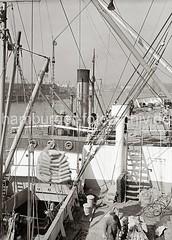 Eine Hieve Säcke über dem Laderaum des Frachters; ca. 1934.