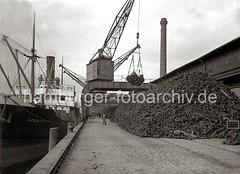 Die Ladung eines Frachters mit Farbhölzern wird im Hafen Hamburgs gelöscht; ca. 1934.