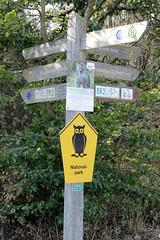 Der Nationalpark Kellerwald-Edersee im nordhessischen Landkreis Waldeck-Frankenberg ist ein 57,38 km² großer Nationalpark im Mittelgebirge Kellerwald.