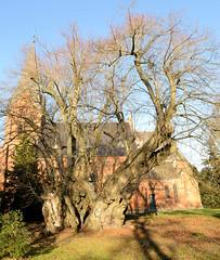 Polchow liegt im Landkreis Rostock in Mecklenburg-Vorpommern.