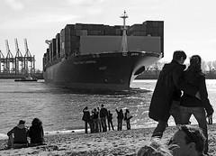 Wenden eines Containerschiffs auf der Elbe - Zuschauer bei der Strandperle. Im Hintergrund Containerkräne des Walteshofer Hafens.