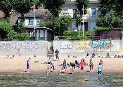 Badewetter in Hamburg - Abkühlung in der Elbe. Im Hintergrund Häuser am Elbweg - eine Laube steht in einem der Gärten. Kinder baden im Wasser der Elbe.