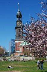 Liegewiese in Hambugs Innenstadt - Mittagspause in der Frühlingssonne.
