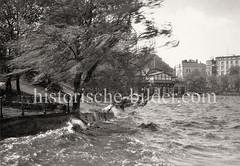 Windiges Wetter an der Aussenalster, Wellen schlagen an das Alsterufer - im Hintergrund Gebäude am Alsterglacis.