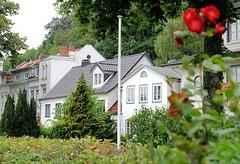 Häuserzeile in Neumühlen - blühende Rosen im Vorgarten.