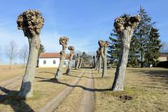 Biesen ist ein Ortsteil der Stadt Wittstock-Dosse im Landkreis Ostprignitz-Ruppin in Brandenburg.