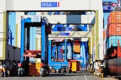 Eine Containerladung wird im Hamburger Hafen gelöscht - Bilder vom HHLA Terminal Burchardkai.