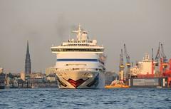 Kreuzfahrtschiff AIDA AURA Hamburg Panorama mit Kirchtürmen.