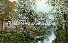Historische Ansichten aus dem Alten Land, blühende Obstbäume.