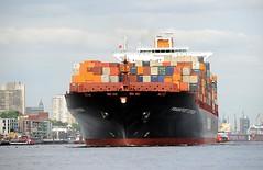Containerschiff Frankfurt Express vor Hamburg Neumühlen. Das hochbeladene Frachtschiff läuft aus dem Hamburger Hafen aus. Links die Büroarchitektur am Hafenrand von Neumühlen.
