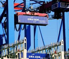 Container am Containerkran - Terminal Burchardkai, Hansestadt Hamburg.