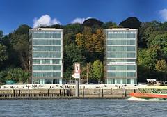 Moderne Büroarchitektur am Altonaer Hafenrand - Herbstbäume am Elbberg. Menschen sitzen auf den Treppenstufen in der Sonne und beobachten die Schiffe auf der Elbe.