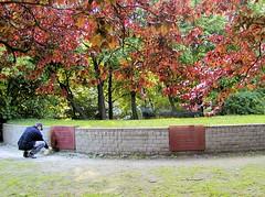 Reinigung einer beschmierten Gedenktafel am Platz der Bücherverbrennung. (2003)