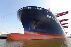 Schiffsbug eines modernen Containerschiffs unter Containerbrücken.