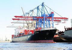 Containerschiff CAP RICARDA am Athabaskakai des Burchardterminals.