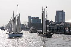 segelschiffe-parade-hafengeburtsgag-fischauktionshalle