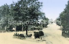 Historische Ansicht vom Marktplatz in Hamburg Niendorf - in der Bildmitte das Kriegerdenkmal; re. der Tibarg, lks. die spätere Friedrich-Ebert-Straße.