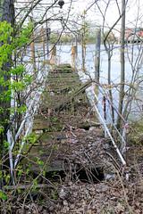 Bilder aus dem Kleinen Grasbrook, Stadtteil in Hamburg -  Moldauhafen; alte zerfallene Wassertreppe am Dresdener Ufer.