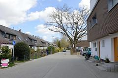 Fotos aus dem Hamburger Stadtteil Groß Borstel, Bezirk Hamburg Nord; Neubauten und Reihenhäuser am Warnckesweg.