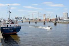 Bilder aus dem Kleinen Grasbrook, Stadtteil in Hamburg - Holthusenkai; Blick vom Holthusenkai über die Norderelbe zur Hafencity.