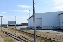 Bilder aus dem Kleinen Grasbrook, Stadtteil in Hamburg -  Übersee Zentrum; Bahnschienen und Lagerhäuser.