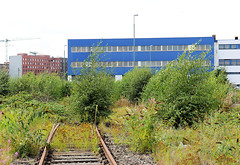 Verwaltungsgebäude  Lagergebäude mit Gleisanschluss  - mit Wildkraut und Bäumen überwucherte Gleisanlage.
