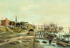 Historische Ansicht von den Landungsbrücken - eine Rinderherde wird entladen; im Hintergrund Kirchttürme Hamburgs und Segelschiffe im Jonashafen / Niederhafen. (ca. 1865)