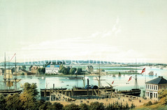 Blick über die St. Pauli Landungsbrücken nach Hamburg Steinwerder, ca. 1855. Rinder werden auf eine Fähre getrieben, re. im Hintergrund  die Mündung vom Köhlbrand.