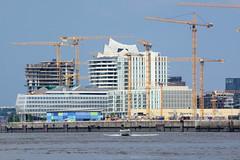 Fotos aus dem Hamburger Stadtteil Hafencity; Baukräne am Standkai.